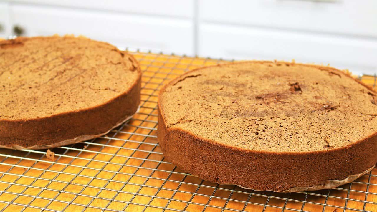 Chocolate Sponge Cake - It's Raining Flour