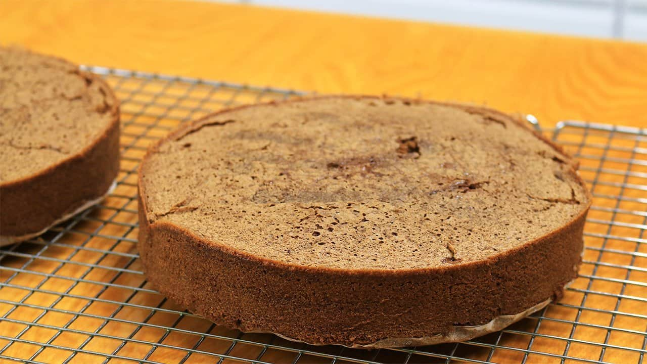 Chocolate sponge cake it 39 s raining flour for Chocolate sponge ingredients